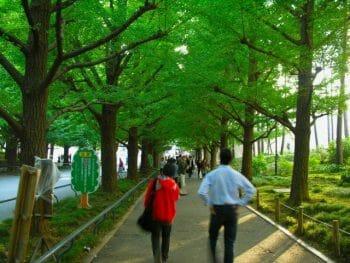 慶応大学日吉キャンパス